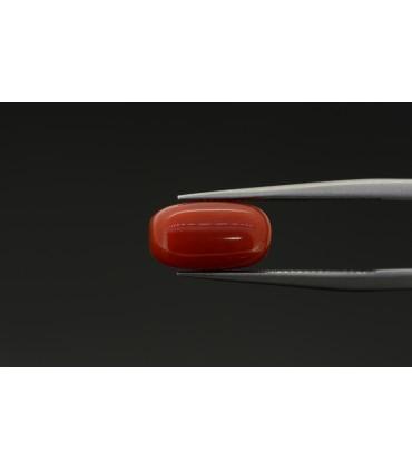 6.00 cts Natural Ruby