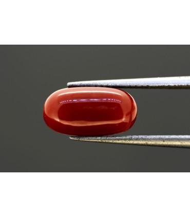 1.13 cts Natural Emerald
