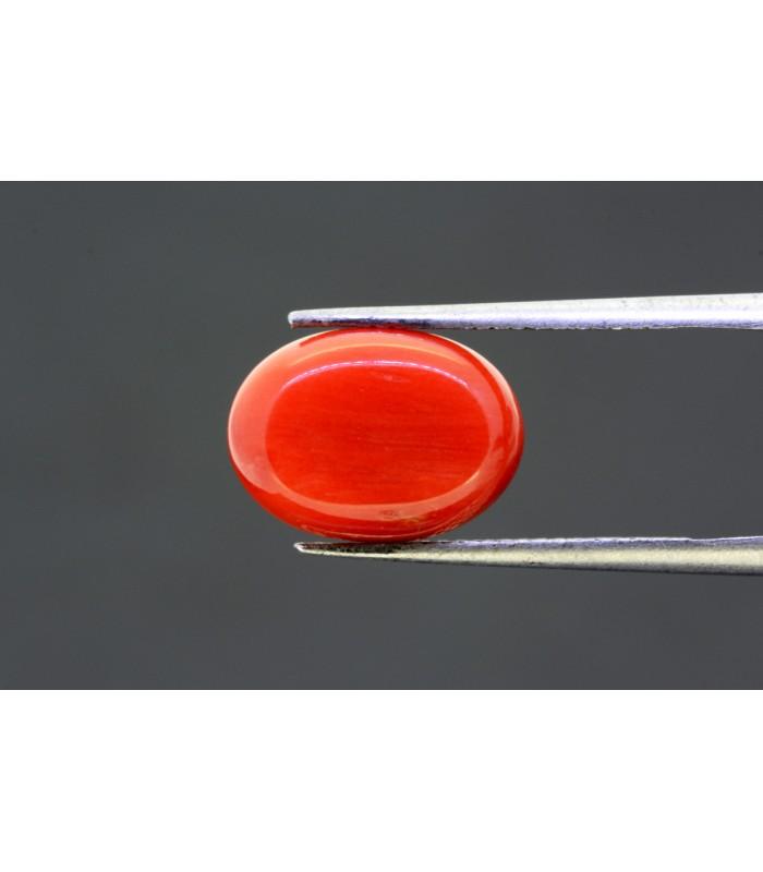 50.75 gms Natural Crystal