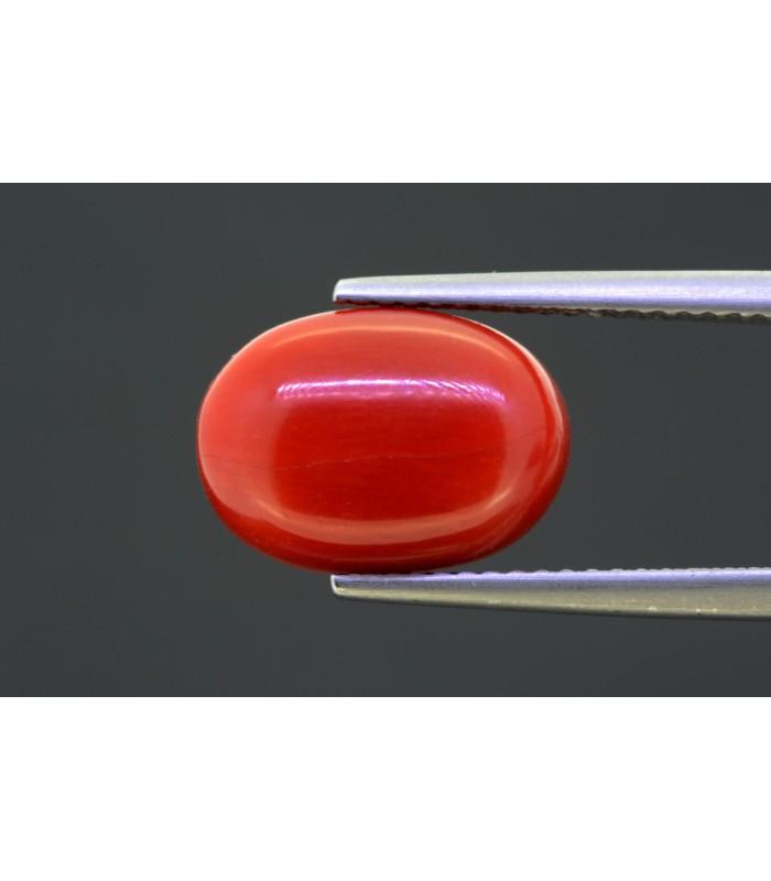 48.14 gms Natural Crystal